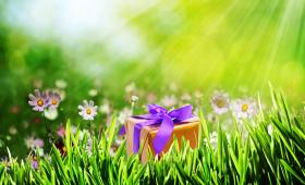 Квест «Пикник» для взрослых и подростков: командная игра с поиском спрятанного сюрприза на природе или в лесу